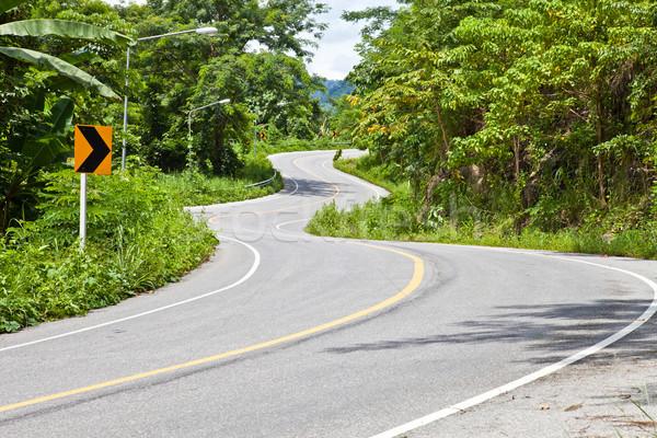 кривая дороги автомобилей дерево лес природы Сток-фото © pinkblue