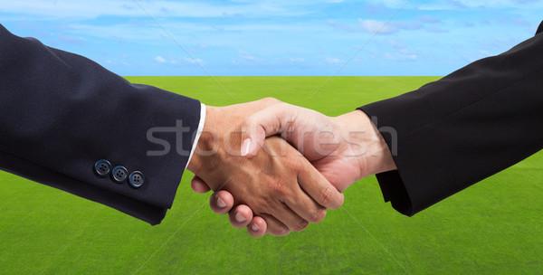 Businessman handshake on green grass field and blue sky Stock photo © pinkblue