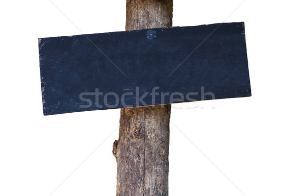 Blank board attach with a tree Stock photo © pinkblue