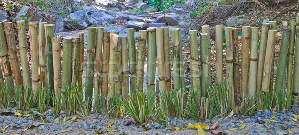 Bambù recinzione legno natura giardino sfondo Foto d'archivio © pinkblue