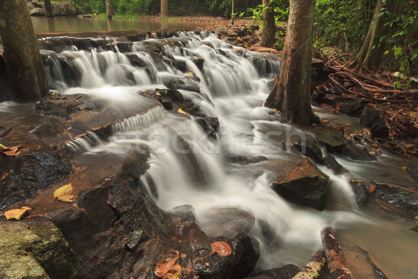 Waterval park Thailand water boom berg Stockfoto © pinkblue