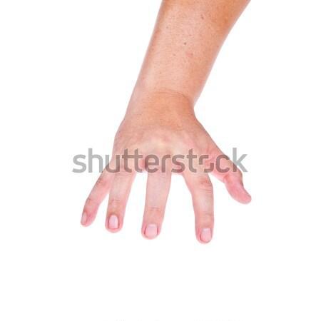 Halloween hand glas palm schaduw vinger Stockfoto © pinkblue