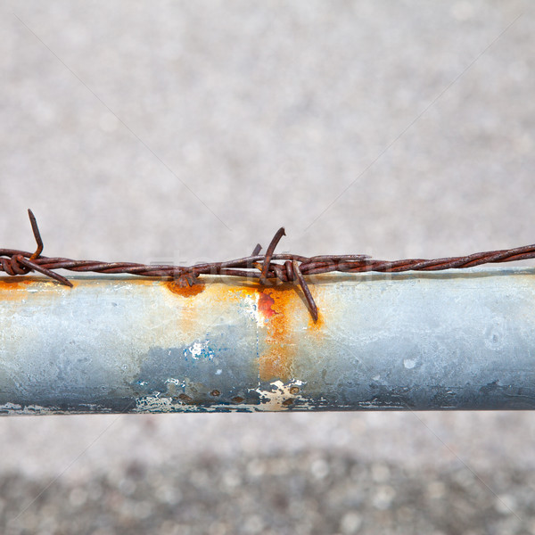 Rusty barbed wire on a metal tube Stock photo © pinkblue