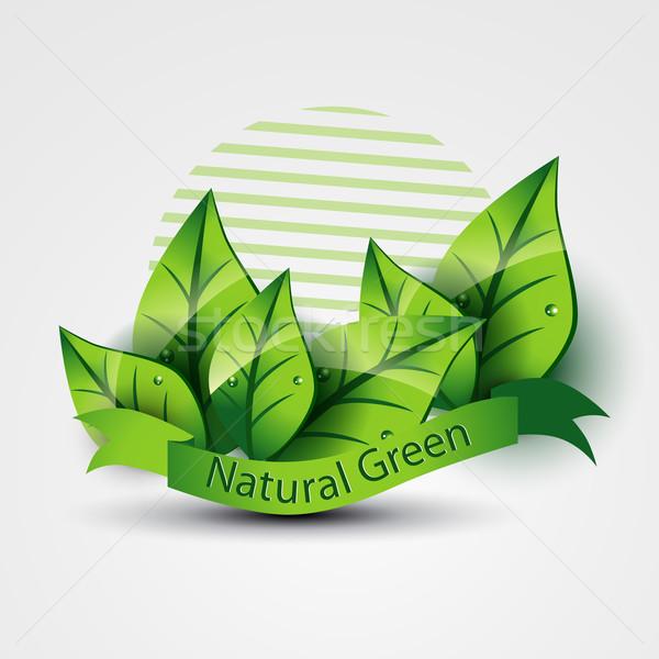natural green Stock photo © Pinnacleanimates