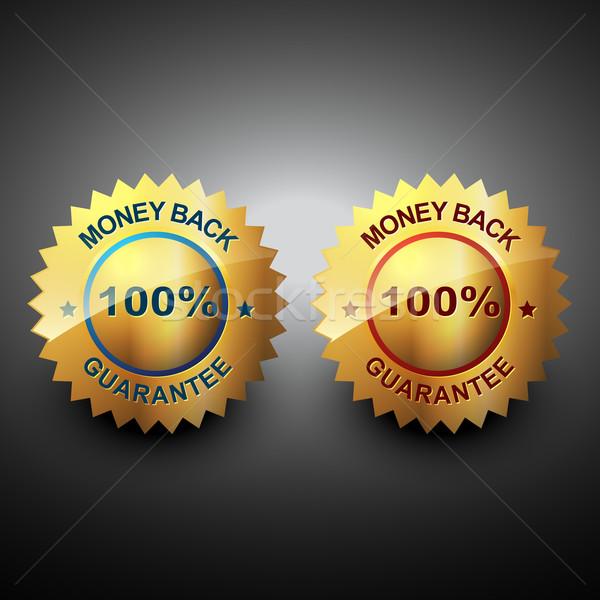 Pénz hát garancia vektor gyönyörű ikon Stock fotó © Pinnacleanimates