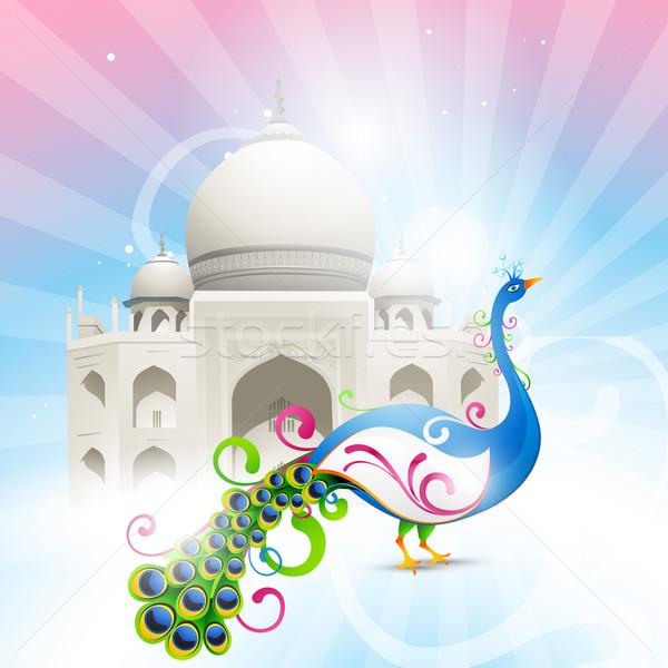 Gyönyörű Taj Mahal művészi vektor páva természet Stock fotó © Pinnacleanimates