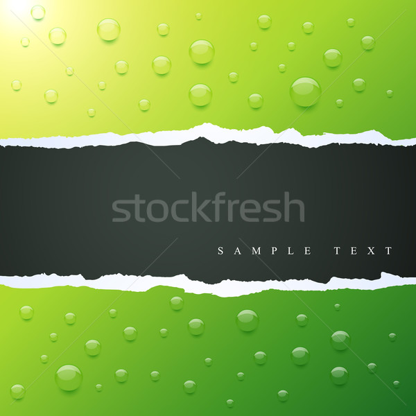 Vettore verde colore acqua arte Foto d'archivio © Pinnacleanimates
