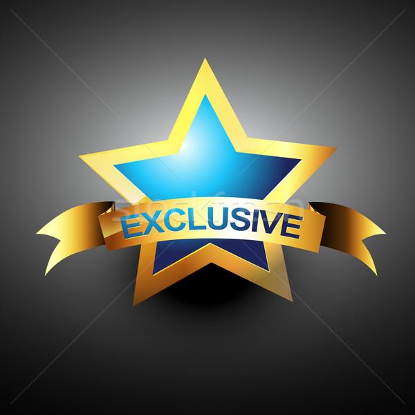 Vetor exclusivo ícone dourado projeto negócio Foto stock © Pinnacleanimates
