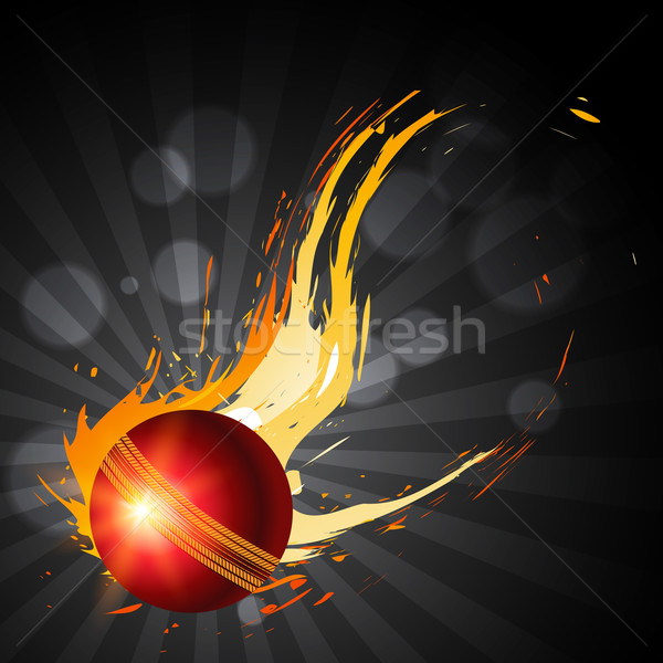 Abstract cricket bal artistiek zomer team Stockfoto © Pinnacleanimates