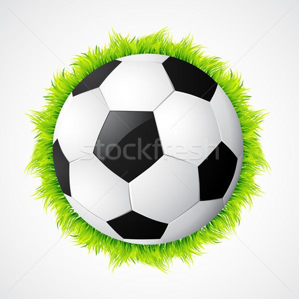 vector football design Stock photo © Pinnacleanimates