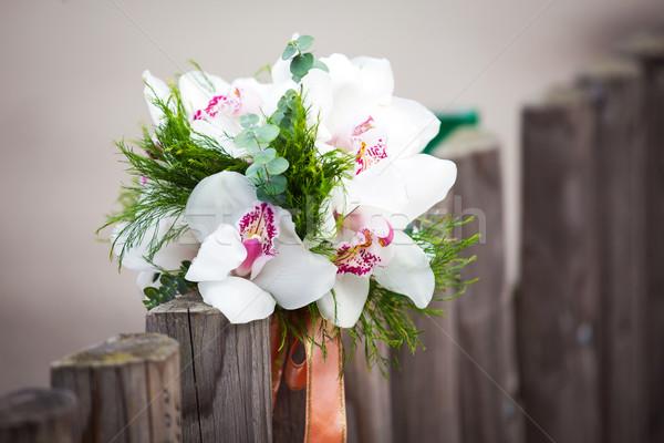 Weiß Orchideen rustikal Land Zaun Stock foto © pixachi