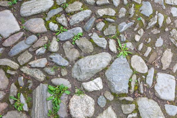 Rzeki szorstki kamienie bruk ulicy ogród Zdjęcia stock © pixachi