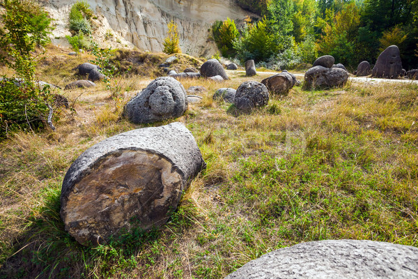 The Trovants of Costesti - The Living and Growing Stones of Roma Stock photo © pixachi