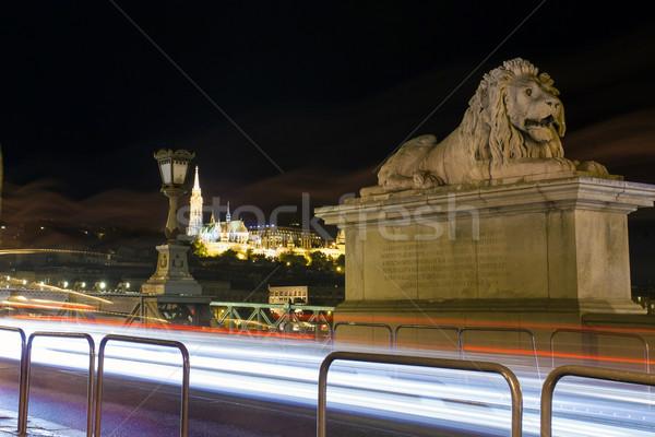 Leeuw sculptuur detail keten brug donau Stockfoto © pixachi