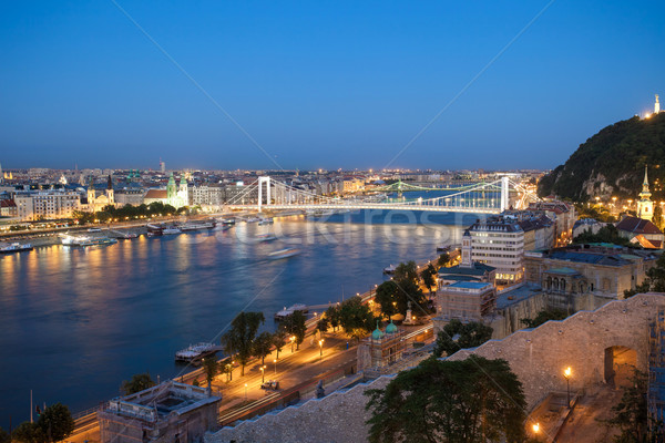 Elisabeth Bridge over Danube river Stock photo © pixachi