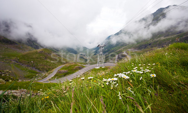 горные дороги Румыния покрытый тумана автомобилей Сток-фото © pixachi