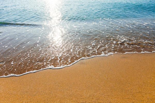 мягкой волна морем солнце свет Сток-фото © pixachi