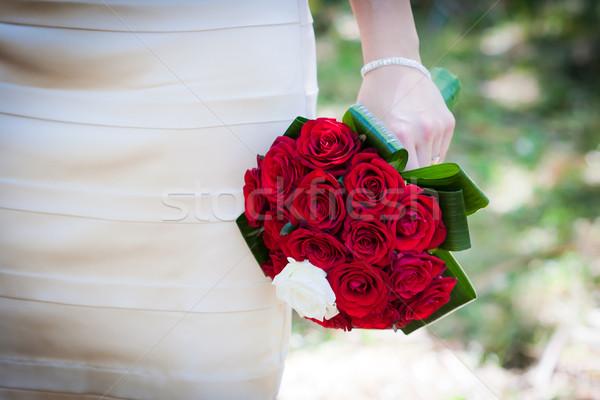 Braut halten rote Rosen Frau Hand Stock foto © pixachi