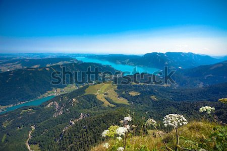 Attersee lake view from Schafber peak Stock photo © pixachi