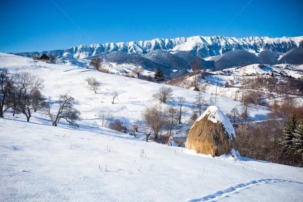 Típico inverno cênico ver farelo castelo Foto stock © pixachi