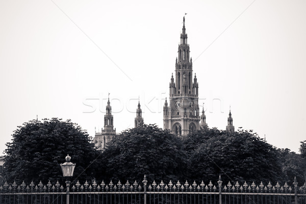 Gothic building tower of Vienna city hall Stock photo © pixachi