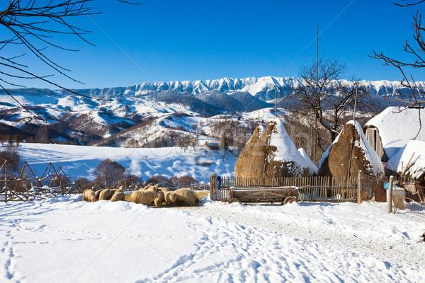 Tipik kış manzaralı görmek kepek kale Stok fotoğraf © pixachi