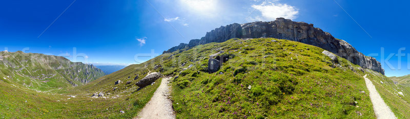 Stock fotó: Panorámakép · kilátás · nyár · terjedelem · tavasz · zöld