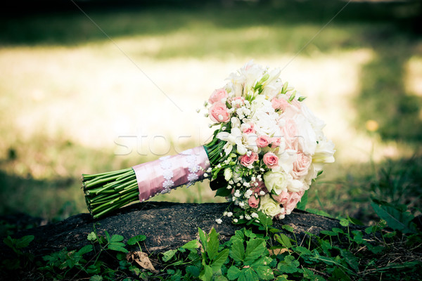 невеста розовый желтый роз любви Сток-фото © pixachi