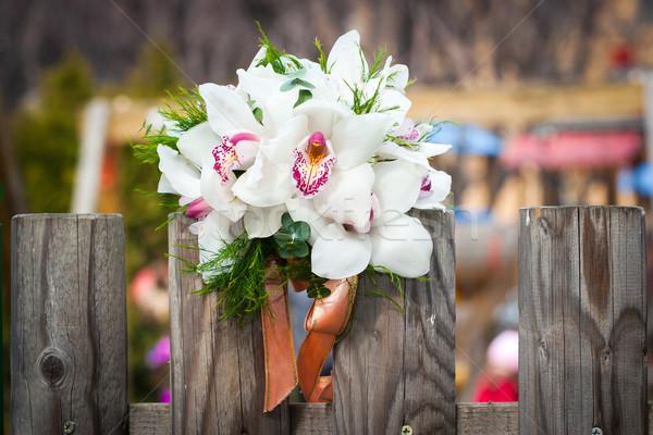 Bianco orchidee rustico paese recinzione Foto d'archivio © pixachi