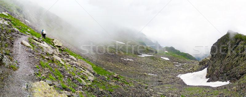 Panoramic view of Fagaras Mountain on summer Stock photo © pixachi