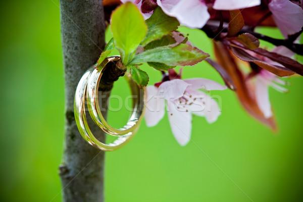 Alliances rose cerise fleurs mariage Photo stock © pixachi