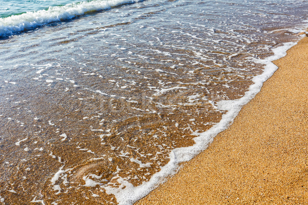 Stock photo: Soft wave of the sea on the sandy beach