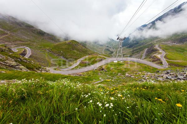 Montanha estrada flores silvestres Romênia flores carro Foto stock © pixachi