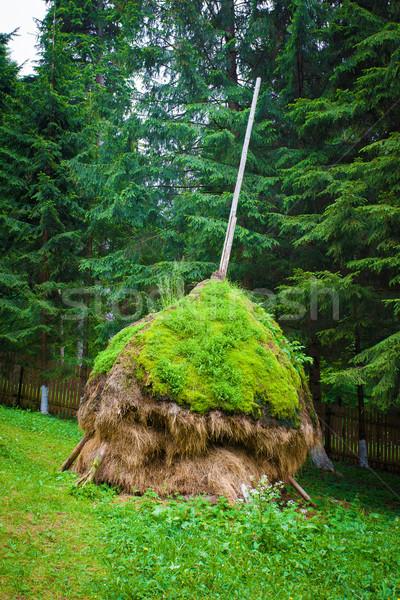 Geleneksel dağ kuru ot yığını Romanya arka plan alan Stok fotoğraf © pixachi