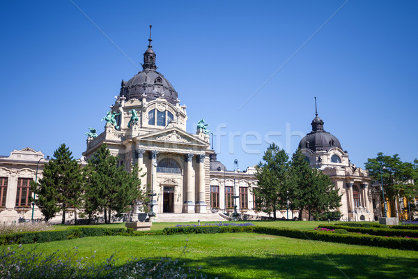 Thermal Baths and Spa, Budapest Stock photo © pixachi