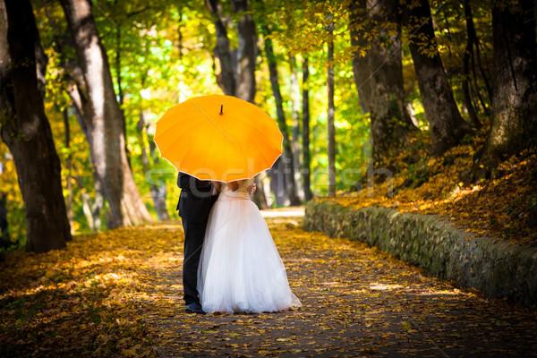 Jonge echtpaar liefde zoenen paraplu kant Stockfoto © pixachi