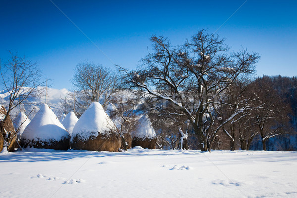 Typical winter scenic view with hayracks Stock photo © pixachi