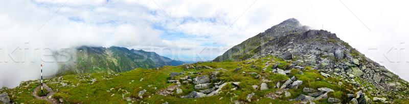 Photo stock: Panoramique · vue · montagne · été · gamme · chemin