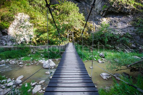 Suspended bridge in Cheile Turzii Stock photo © pixachi