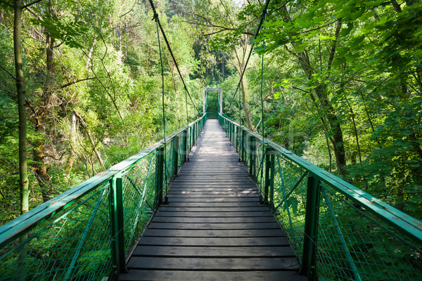 Suspended bridge in Cheile Turzii Stock photo © pixachi