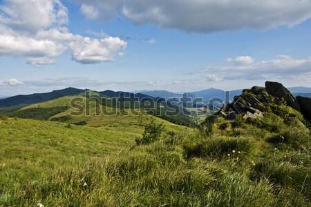Vert montagne ciel arbre herbe forêt Photo stock © pixelman