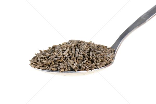 Kömény kanál izolált fehér makró fűszer Stock fotó © pixelman