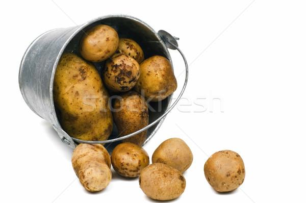 Potato Stock photo © pixelman