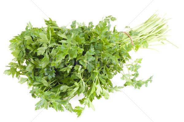 Persil alimentaire feuille fond vert Photo stock © pixelman