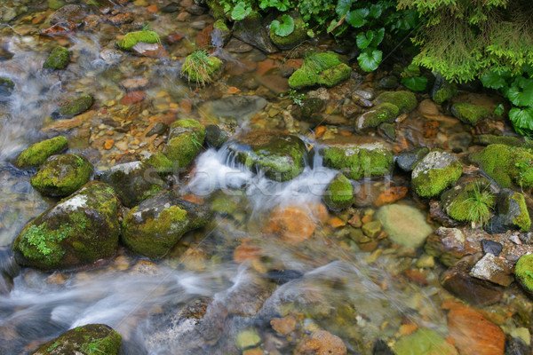 Dağ dere vadi doğa park taşlar Stok fotoğraf © pixelman