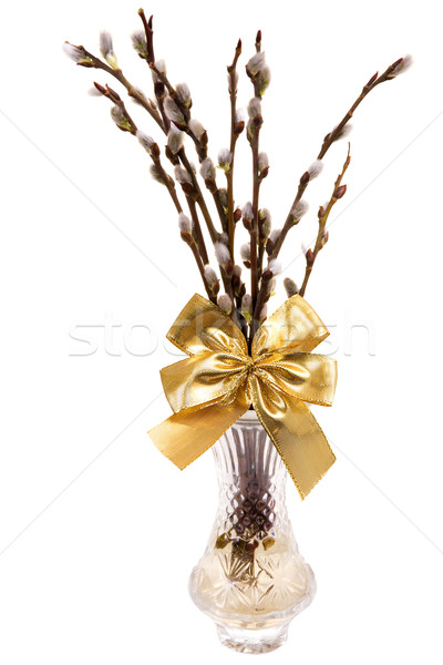 Easter catkins with golden ribbon in vase isolated on white background Stock photo © pixelman