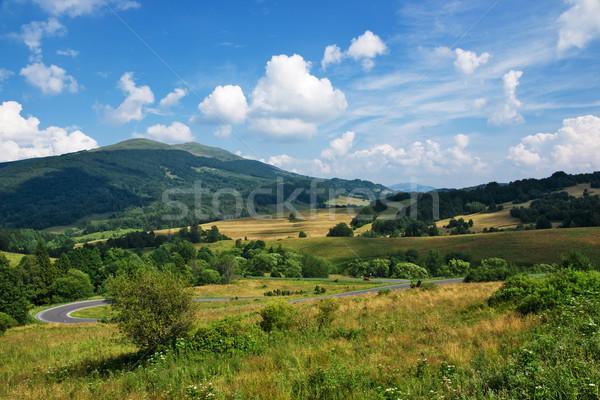 Polish green mountains Carpathians Stock photo © pixelman