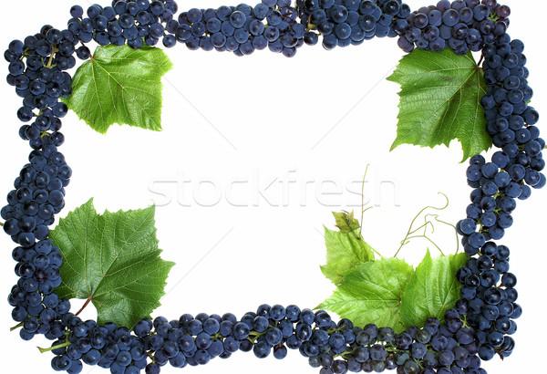 Cadre raisins isolé alimentaire vin nature Photo stock © pixelman