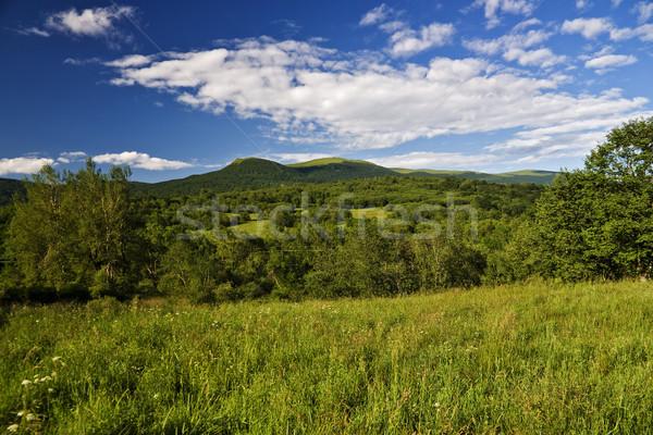 Montanhas panorâmico grama verão Foto stock © pixelman