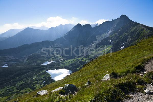 Alto grama montanha verão rocha lago Foto stock © pixelman